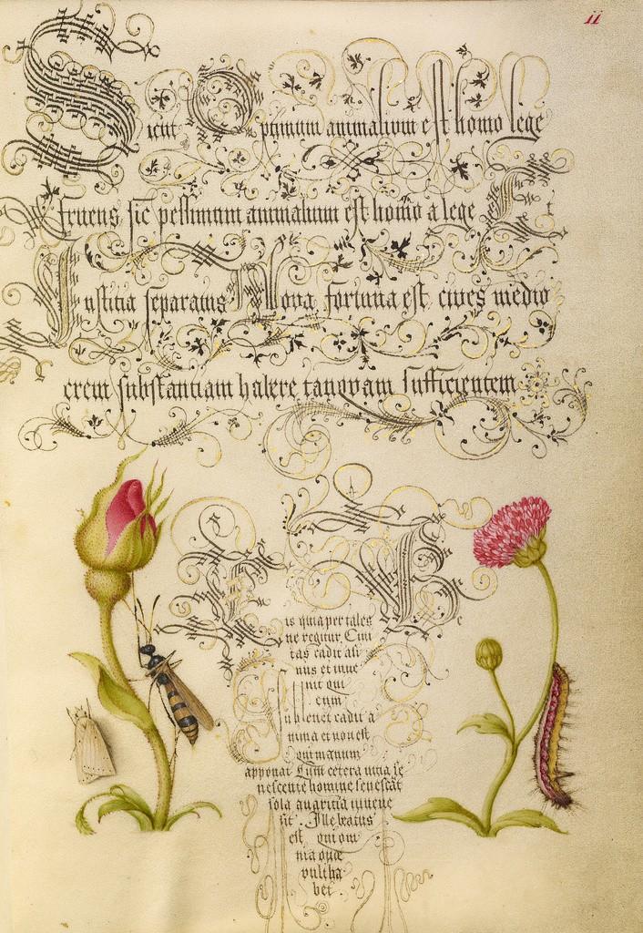 Mira-calligraphiae-monumenta_4