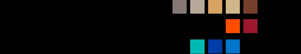 FV logo e colori